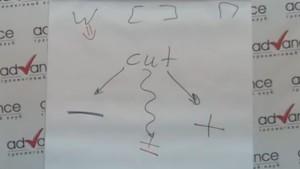 Transcripciy2