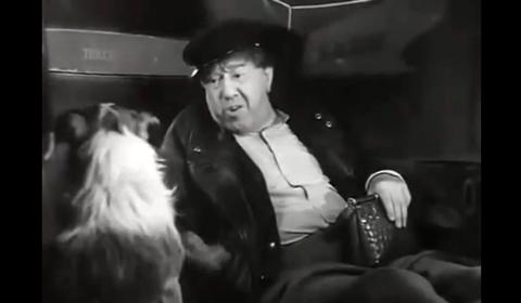 Monsieur Taxi-2